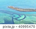 ポンフー ダブルハート 海 40995470