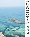 ポンフー ダブルハート 海 40995471