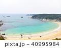 伊豆下田の白浜海岸 40995984