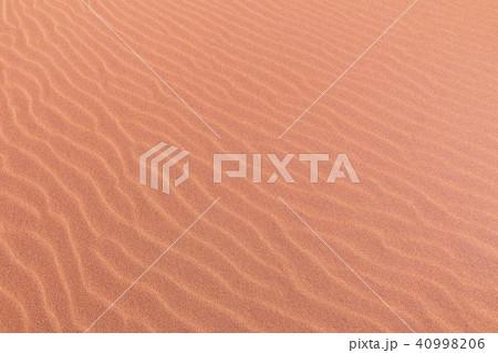 鳥取砂丘(とっとりさきゅう)の風紋(ふうもん)写真 40998206