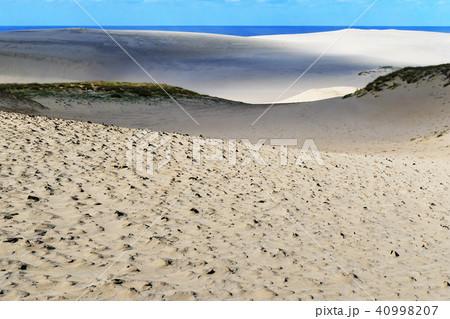 鳥取砂丘(とっとりさきゅう)の風紋(ふうもん)写真 40998207