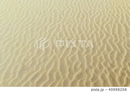 砂丘(さきゅう)の風紋(ふうもん)写真 40998208