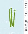 アスパラガス 水彩画 41008312