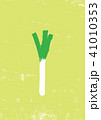 葱 長葱 野菜のイラスト 41010353