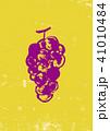 ぶどう 葡萄 果物のイラスト 41010484