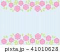 薔薇 ストライプ 41010628