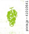 ぶどう 葡萄 果物のイラスト 41010641