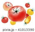 トマト 野菜 ミニトマトのイラスト 41013390