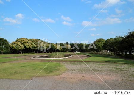 卯の起公園(市原市) 41016758