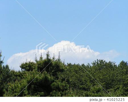 初夏の青空と白い雲 41025225