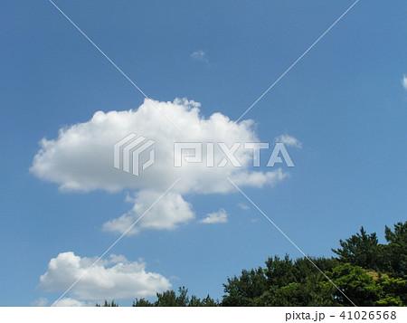 稲毛海浜公園から見た青い空と白い雲 41026568