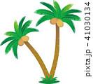 椰子の木 41030134