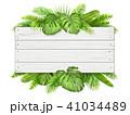 トロピカル 熱帯 木のイラスト 41034489