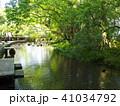 湧水流れる水辺 41034792