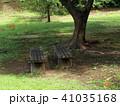 木陰に咲く彼岸花とベンチ 41035168