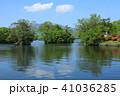 大沼 自然 晴れの写真 41036285