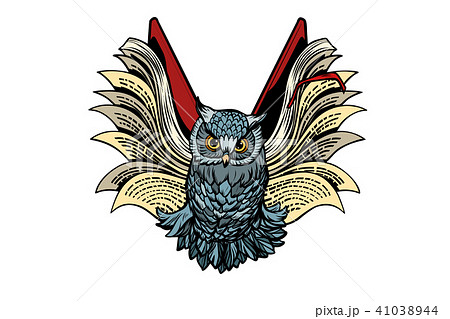 owl book flies, isolate on white background 41038944