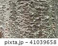 樹皮 41039658