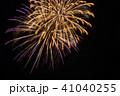 花火 菊 41040255