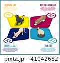 ねこ ネコ 猫のイラスト 41042682