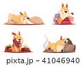 こいぬ 仔犬 子犬のイラスト 41046940