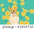 犬 狗 わんこのイラスト 41054710