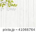 背景-植物-白壁 41066764
