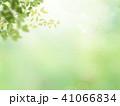 背景-新緑 41066834