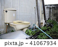 Old broken toilet cabin surrounded with wild veget 41067934