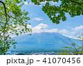 富士山 初夏 新緑の写真 41070456