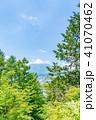 富士山 初夏 新緑の写真 41070462