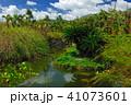 由布島 晴天 晴れの写真 41073601