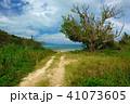 風景 竹富島 晴れの写真 41073605