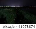 ホタル 光 夜の写真 41073874