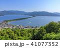 天橋立 新緑 風景の写真 41077352