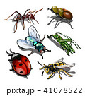 Set of insects isolated on white background. Vector illustration. 41078522