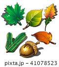 ベクター 樹木 樹のイラスト 41078523