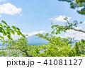 富士山 初夏 新緑の写真 41081127