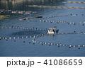 漁業 エサやり 海の写真 41086659