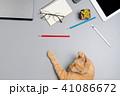 テーブル ねこ ペンの写真 41086672