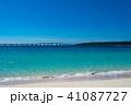 来間大橋 海 風景の写真 41087727
