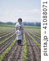農業 畑 お手伝いの写真 41088071