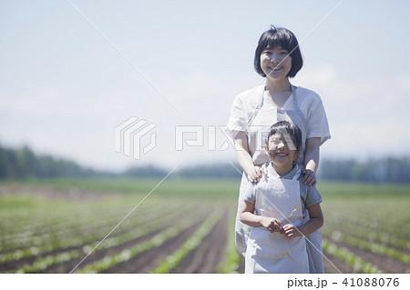 畑作業をする親子 41088076