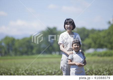 畑作業をする親子 41088079