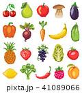 くだもの フルーツ 実のイラスト 41089066