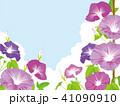 朝顔 夏 花のイラスト 41090910