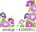 朝顔 夏 花のイラスト 41090911