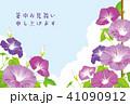 朝顔 暑中お見舞い 花のイラスト 41090912