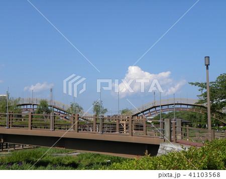 潮来アヤメ園の太鼓橋 41103568