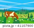 動物 牛 ウシのイラスト 41107900